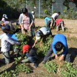 自然体験学習会(2012.10.21)