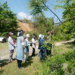 里山カルチャー教室:山野草茶づくり