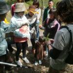 里山カルチャー教室:山野草採取&森ヨガ(2015.4.23)