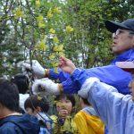 自然体験学習会:五感で楽しむ里山の12ヶ月(2015.4.19)