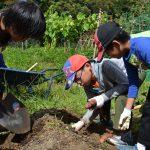 自然体験学習会:五感で楽しむ里山の12ヶ月(2015.9.20)