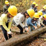 自然体験学習会:五感で楽しむ里山の12ヶ月(2016.11.20)