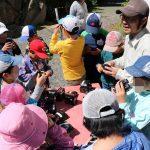 自然体験学習会:五感で楽しむ里山の12ヶ月(2018.5.20)
