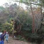 自然体験学習会:五感で楽しむ里山の12ヶ月(2018.11.18)
