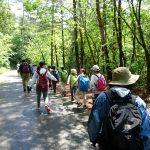 自然体験学習会:五感で楽しむ里山の12ヶ月(2019.6.16)