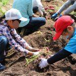 自然体験学習会:五感で楽しむ里山の12ヶ月(2019.9.15)